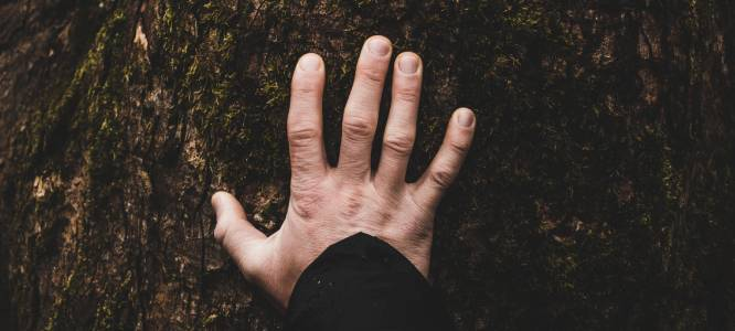 Handposities-Reiki